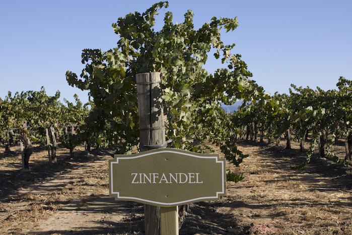 The Zen of Zin: 40 Zinfandels Graded By Our Wine Retailer Panel